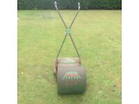 Webb Wasp lawnmower