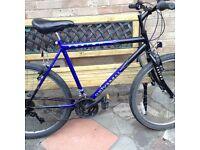 Full size mountain bike