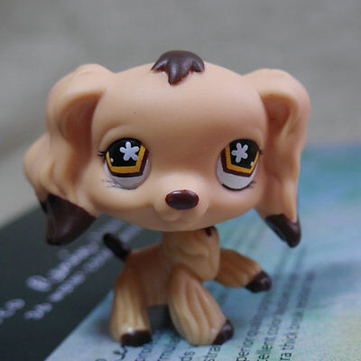 LPS Brown Cream Cocker dog pubby #575 HTF Action Figure gift LITTLEST PET SHOP