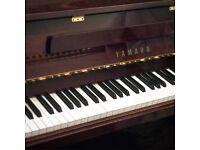 Yamaha Piano P116N