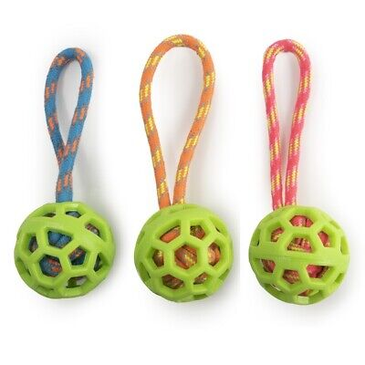 Ancol Frame Ball Dog Toy with Handle - Great for Fun Throwing & Fetching Games
