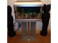 2FT FISHTANK COMPLETE WITH EVERYTHING