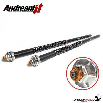 Andreani adjustable forks cartridge Misano EVO for KTM 690 Duke 2007 07>
