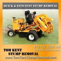 Tree Stump Removal and Stump Grinding