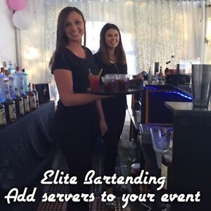 Bartenders for your next business function Moose Jaw Regina Area image 5