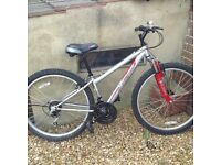 As new unisex mountain bike
