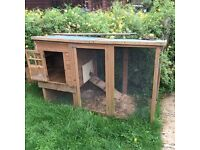 Chicken coop, was used as rabbit hutch