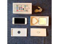 iPhone 5s 16gb (white / silver)