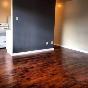Spacious 2 Bedroom Apartment Avail. July 1st.