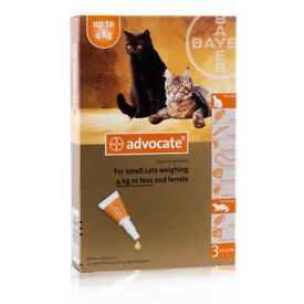ADVOCATE FLEA TREATMENT FOR SMALL CATS AND FERRETS
