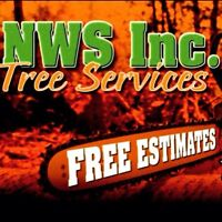 TREE CUTTING SERVICES IN EDMONTON
