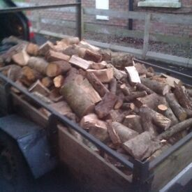 6 x4 Foot Trailer Hardwood Logs + branch wood FREE LOCAL DELIVERY