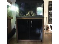 110 L Interpet Fishtank Comlete With Stand