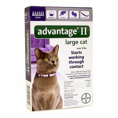 Advantage II Large Cat 6-Pack Flea Lice Larvae Topical Treatment Bayer