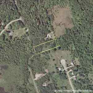 New Listing - Private Wooded Rural Lot close to trout Stream Oakville / Halton Region Toronto (GTA) image 3