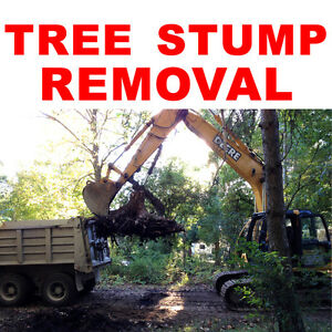 STUMP GRINDING SERVICES Peterborough Peterborough Area image 2