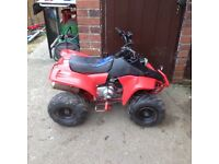 X2 50cc 4stroke quads spare repair project.
