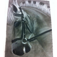 Equine Art- Charcoal and Pencil Drawings