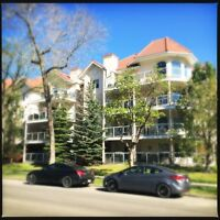 Beautiful Downtown-Oliver Furnished Condo