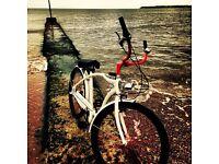 Shwinn Beach Cruiser Bike