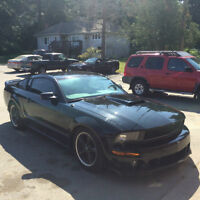 2008 Ford Mustang Bullet Coupe (2 door)