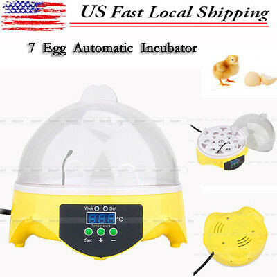 7 Eggs Digital Clear Egg Incubator Hatcher Turning Temperature Control Duck Bird
