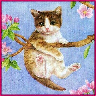 30 Custom Kitten In A Tree Personalized Address Labels