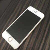 iPhone 5s 16gb with bell/virgin