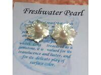 Fresh Water Pearl Stud Earrings