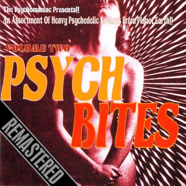VARIOUS - Psych Bites Vol. 2. New Past & present CD