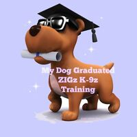 ZIGz K-9z PUPPY/DOG TRAINING CLASSES