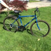 "12 Speed Mountain Bike with 26"" tires"