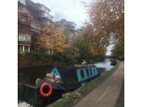 Narrowboat for December, Christmas and New Year (3 weeks)