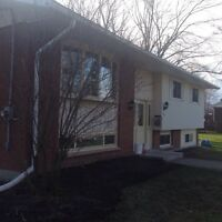 Beautiful 5 Bedroom 2 Bath Family Home AVAILABLE JUNE 1st