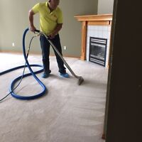 Same Day Deep Carpet Steam Cleaning BBB Accredited