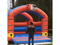 Adult and Child Tiger Bouncy Castle with blower - REDUCED PRICE