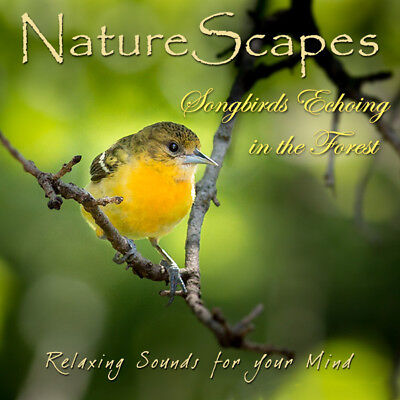 SONGBIRDS BY THE STREAM CD - Relaxing Bird Songs & Nature Sounds for Sleep-Study