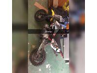 110 Stomp//Stomp Pitbike Pit Bike Wpb