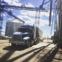 Looking for trucking job