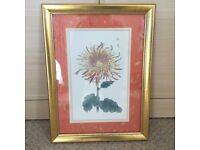 Japanese Flowers Paintings by Kikka Hasegawa