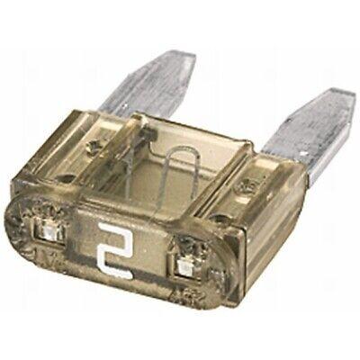 ORIGINAL HELLA Sicherung Mini 2A 8JS728596-081