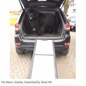 Pet Gear Dog Ramp