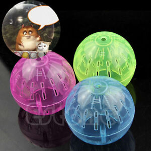 Pet Rodent Mice Hamster Gerbil Rat Jogging Play Exercise Ball Plastic Toys USA