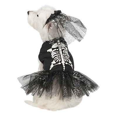 Dog Halloween Costume Glow Skeleton Zombie Costumes Dress Pet Zack & Zoey