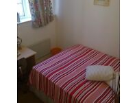 Lovely single bedroom in nice and safe neighborhood!