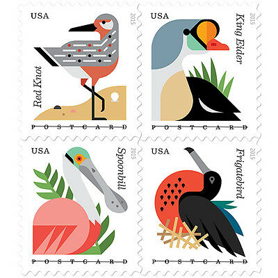NEW USPS COASTAL BIRDS PANE OF 20 POSTCARD RATE
