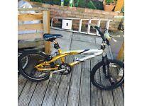 bmx bike 20inch with stunt peds