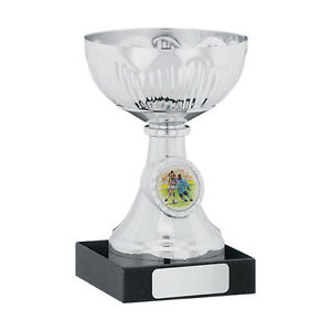 Multi-sport-Award-Cup-School-trophy-table-tennis-football-BMX-FREE-Engraving
