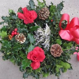 Handmade Christmas Holly Wreath, Made old Fashioned way with moss, fresh Holly filled in ring.