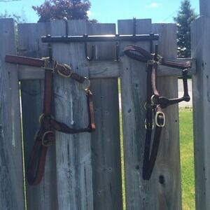 HORSE STUFF FOR SALE!